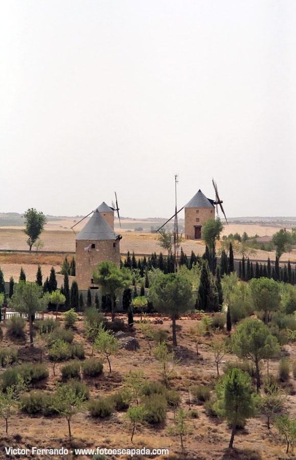 Castillo de Belmonte 8