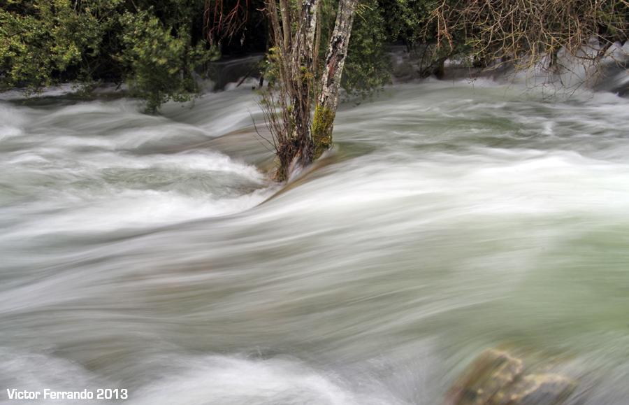 Nacimiento del Rio Cuervo - Cuenca - Agua