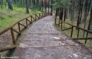 Nacimiento del Rio Cuervo - Cuenca - Camino