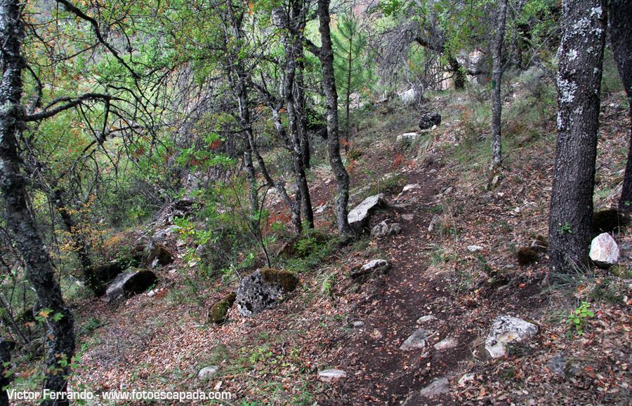 Rutas de senderismo cerca de Cuenca