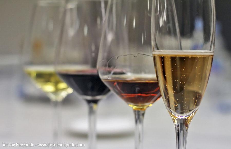 Choco&Wine Cata de Vino y Chocolate Entrecepas Sherpandipity