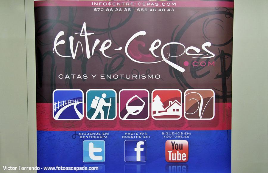 Choco&Wine Cata de Chocolates y Vinos Entrecepas Sherpandipity