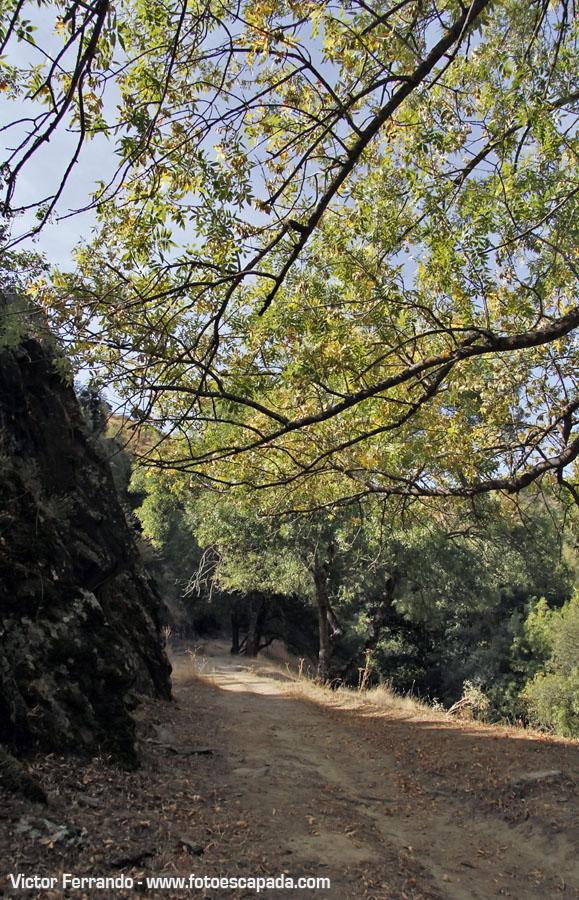 Ruta Pontón de la Oliva hasta Presa de Navarejos Madrid 15