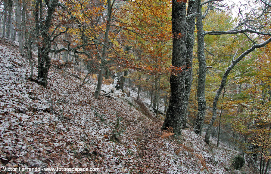 Qué ver en la Sierra Norte de Madrid