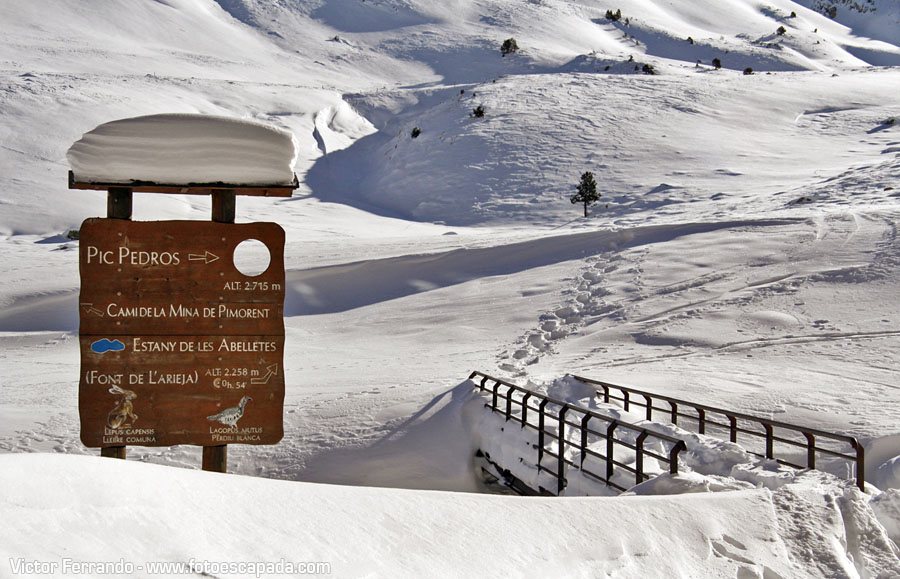 Nieve en Pas de la Casa Andorra
