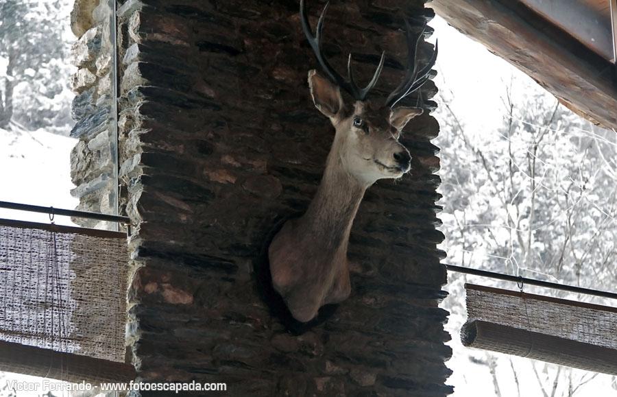 Restaurante Eulari de Pal en Andorra