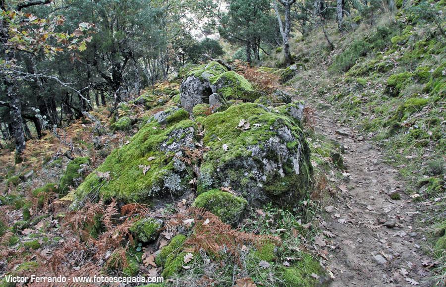 Rutas de senderismo en Gredos