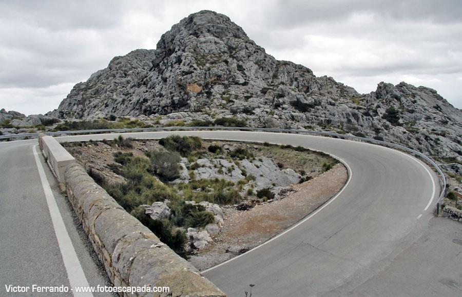 Nudo de la Corbata Mallorca