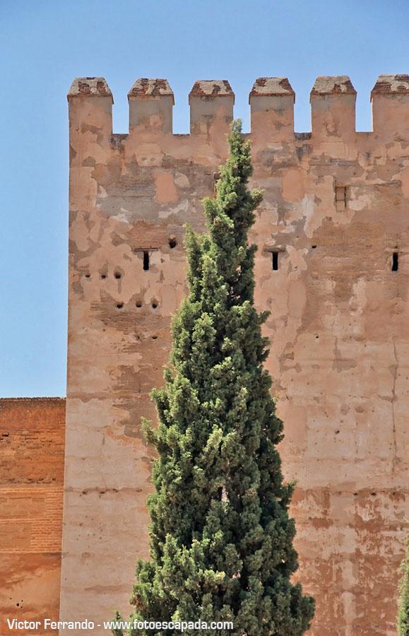 Alhambra de Granada 17