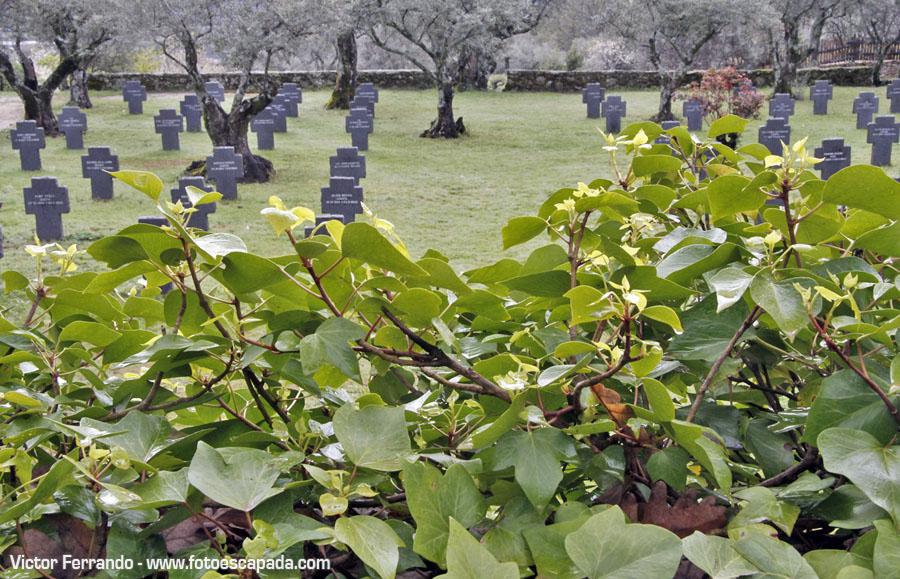 Cementerio Alemán de Cuacos de Yuste