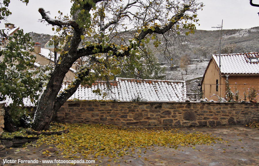 Invierno en la Sierra Norte de Madrid