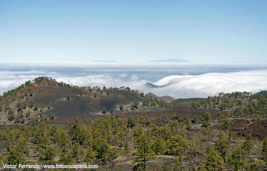 Mar de Nubes en Tenerife