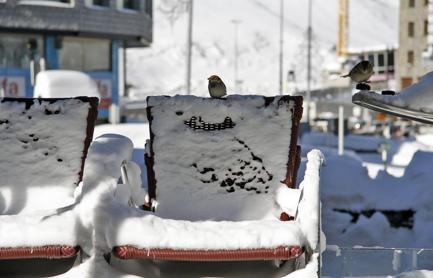 Nieve en Pas de la Casa