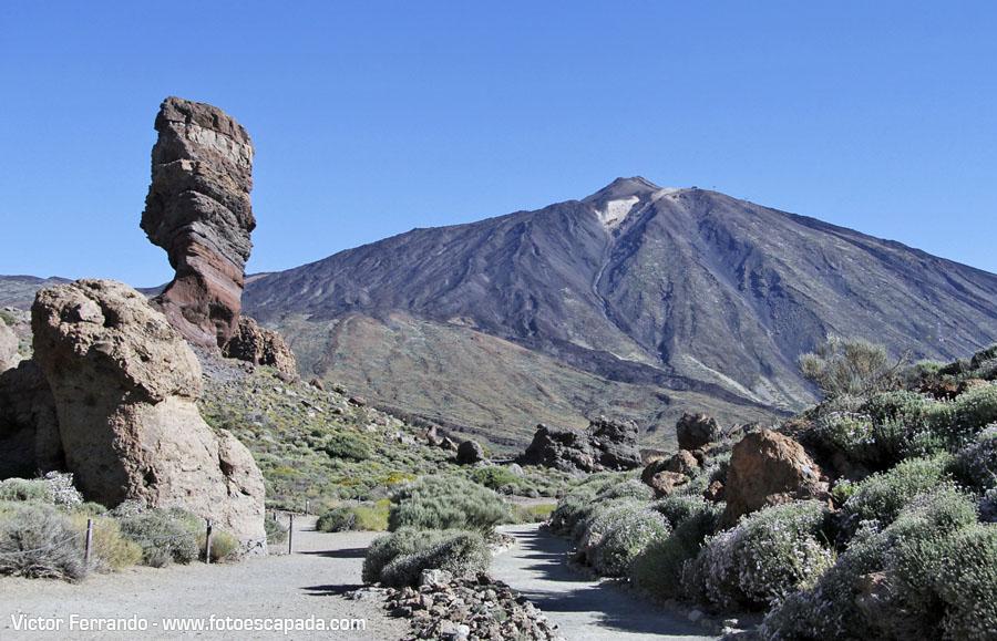 Parque Nacional del Teide 18