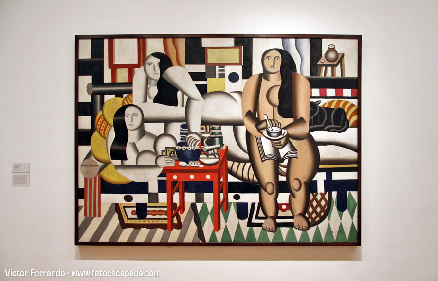 Moma Museum Of Modern Art New York