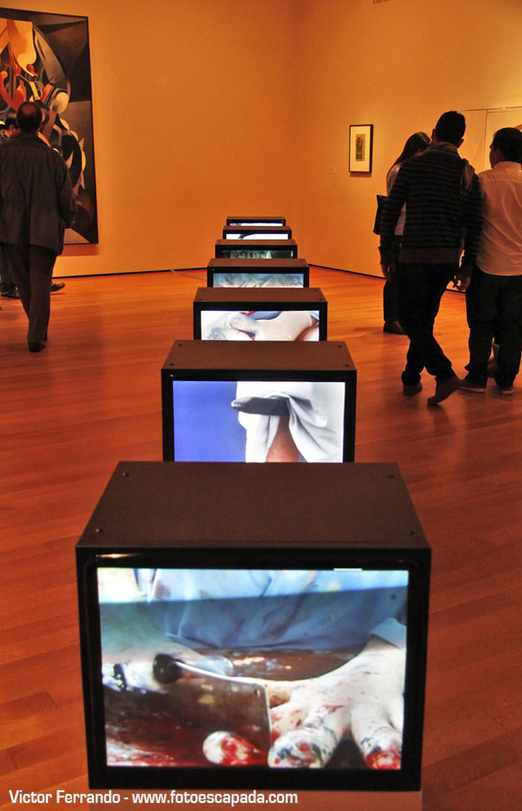 Moma Museum Of Modern Art New York 21