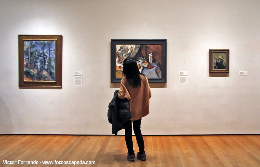 Moma Museum Of Modern Art New York 24