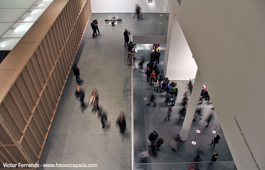 Moma Museum Of Modern Art New York 4