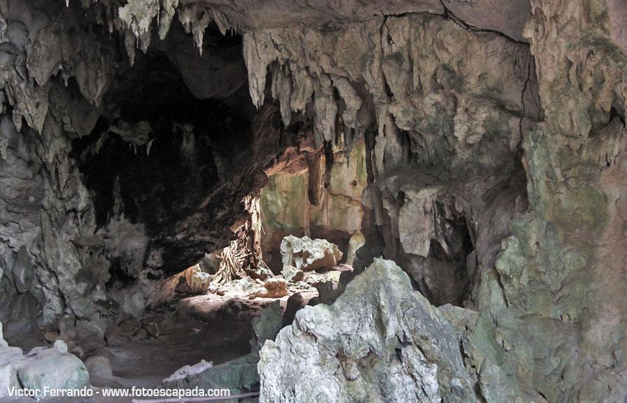 Parque Nacional Los Haitises Republica Dominicana