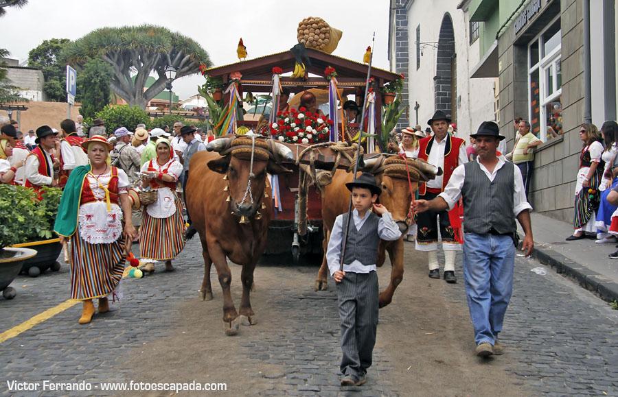 Romería de San Isidro en La Orotava Tenerife