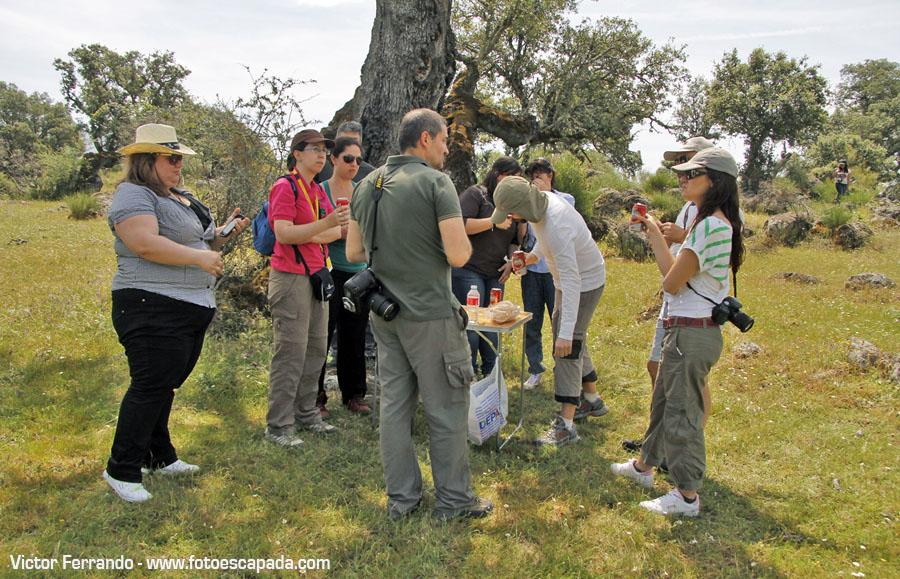 Fotografos en el Safari fotográfico por el Valle del Ambroz