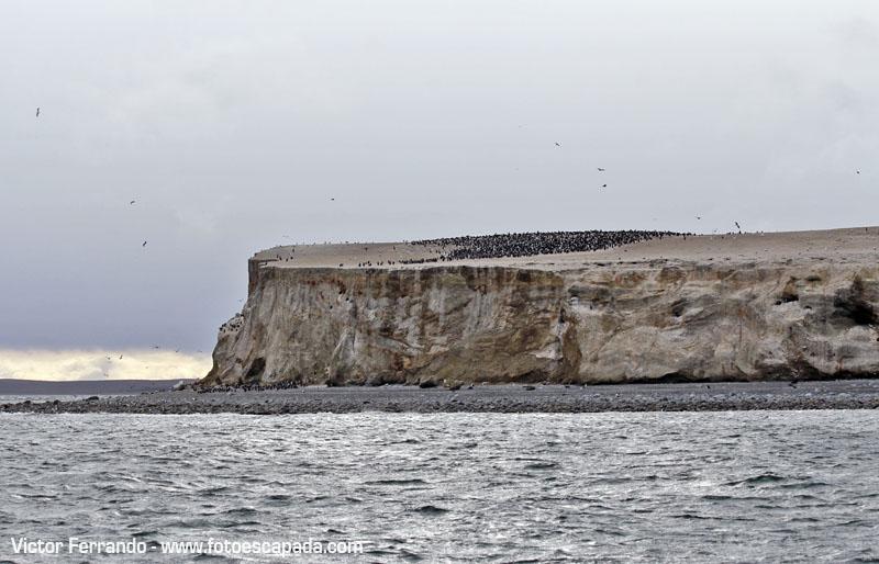 Isla Marta