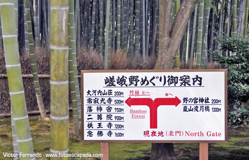 Jardín Zen del Templo Tenryu-ji en Arashiyama