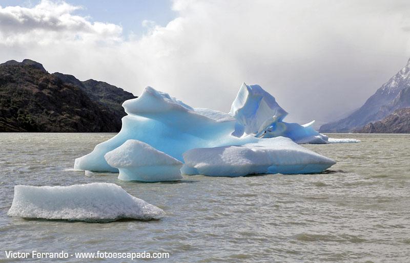 Lago Grey Témpanos