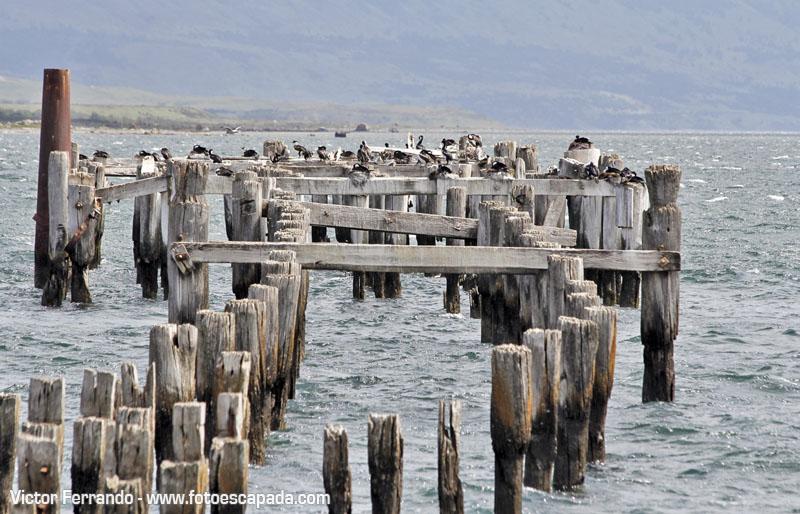 Muelle Puerto Natales