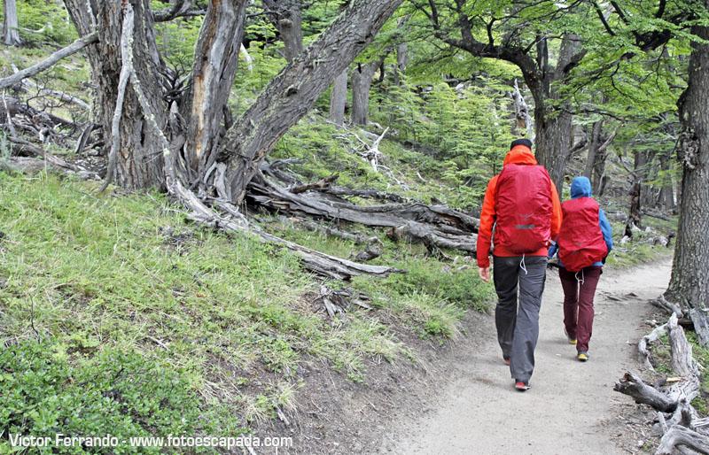 Trekking Fitz Roy El Chaltén
