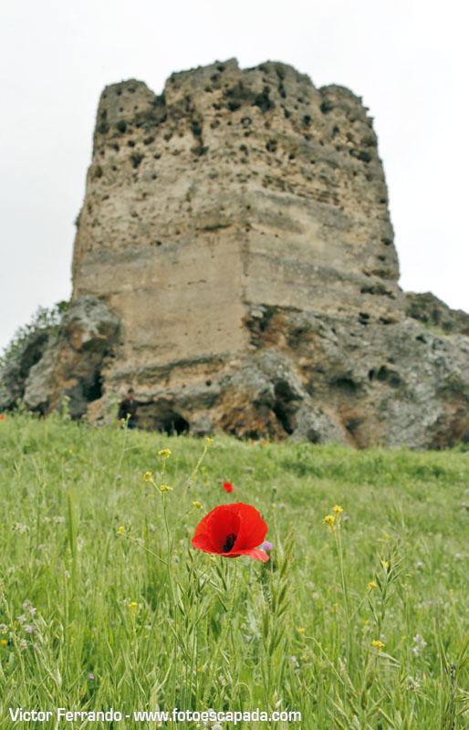 Castillo de Navas de Tolosa