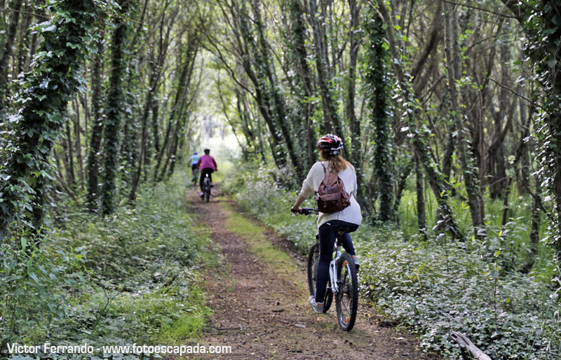 Ruta Btt Turismo activo en Ferrol