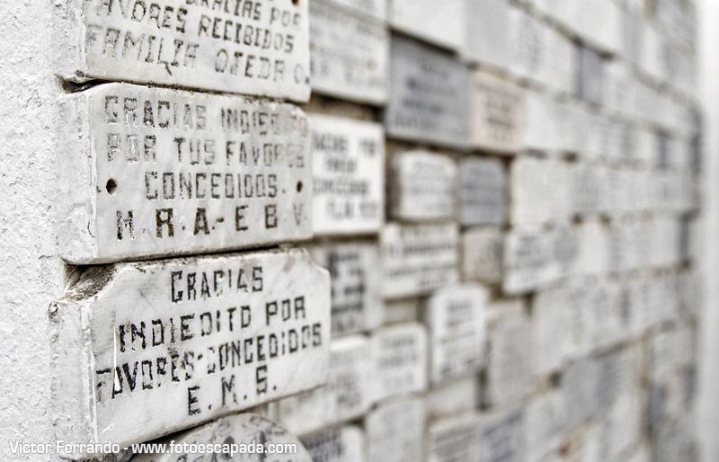 El Indiecito del Cementerio Municipal de Punta Arenas