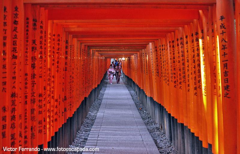 Fushimi Inari Japon