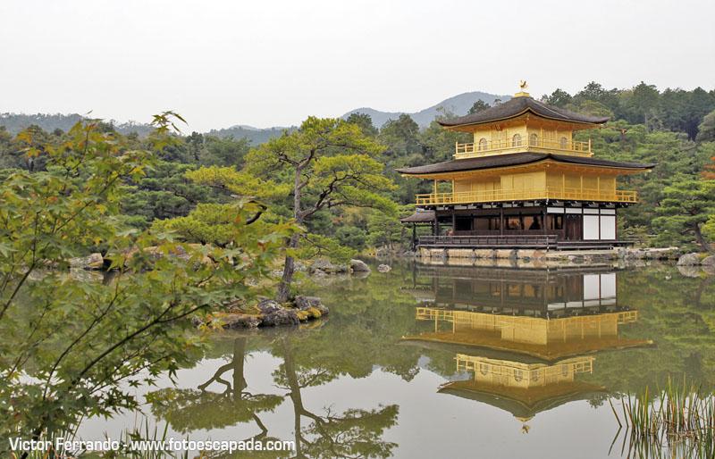 Pabellón Dorado Kyoto