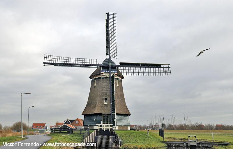 El Molino de Katwoude está muy cerca de Volendam